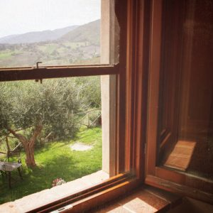 camera-verde-mela-martelletto-bed-and-breakfast-agriturismo-country-house-serra-san-quirico-ancona-marche